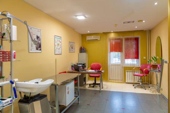 Интерьерная фотосъемка помещений клиники для животных
